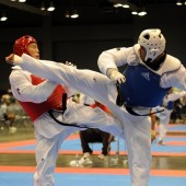 Flickr The U.S. Army Taekwondo champion